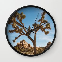Joshua Tree National Park II Wall Clock