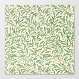 Willow Bough Canvas Print