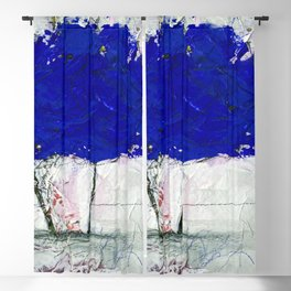 A Bouquet Of Flowers No.6a by Kathy Morton Stanion Blackout Curtain