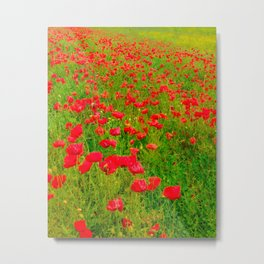 Poppies in the fields Metal Print