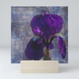 Captivating Iris Mini Art Print