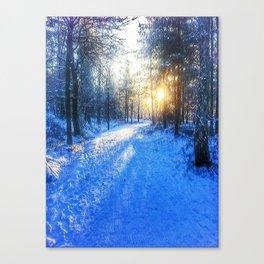 A winter walk. Canvas Print