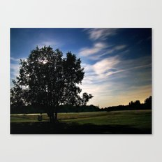 Evening Meadow Canvas Print