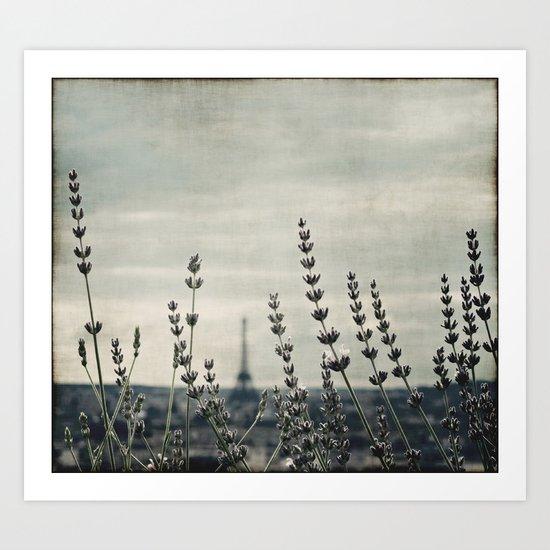 French lavender ~ Paris Art Print