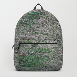 Straw I Grass in the forest I Nature photography  Backpack