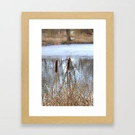 Winter Pond Framed Art Print