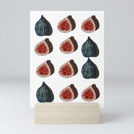 Sweet Summer Figs Mini Art Print