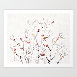 Birch Trees and Cardinal 2  Art Print