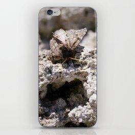 moth on tufa iPhone Skin