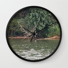 The Heron Wall Clock