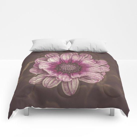 Kenzie Comforters