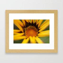 Yellow in macro flower Framed Art Print