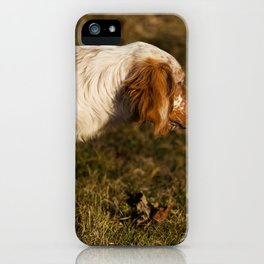 Dog by Luigi Pozzoli iPhone Case