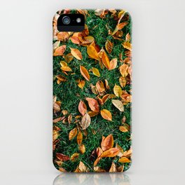Red And Orange Autumn Leaves Background In Fall Season, Autumn Season, Fall Background, Falling Leaf iPhone Case