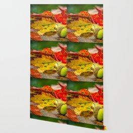 Autumn Leafs (Color) Wallpaper