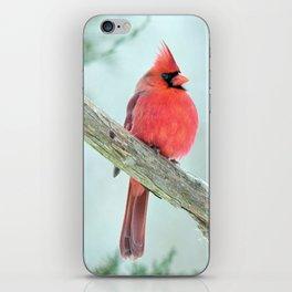 Elegant Cardinal iPhone Skin