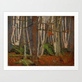 Tom Thomson Birch Woods in Autumn c. 1916 Canadian Landscape Artist Art Print