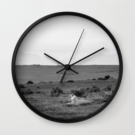 Lone lioness rests on African savanna Wall Clock