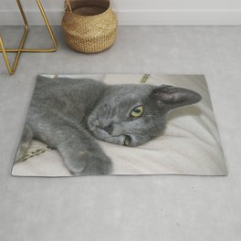 Russian Blue Kitten Relaxed On A Bed Rug