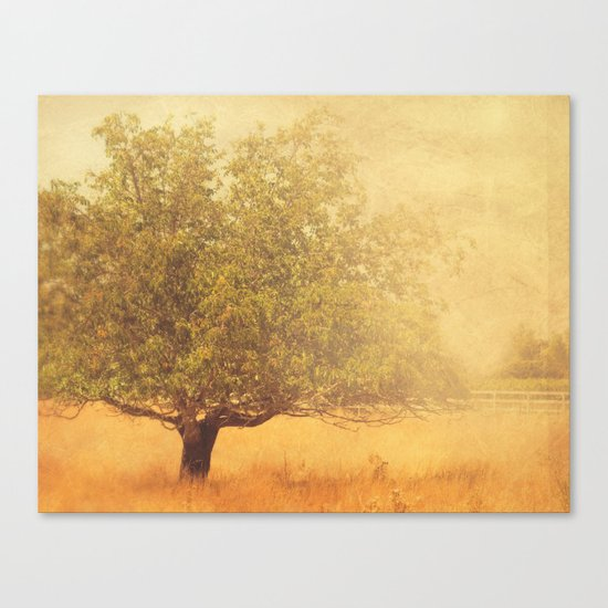 tree photograph. Solitude.  Canvas Print