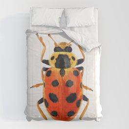 Orange Beetle Comforters