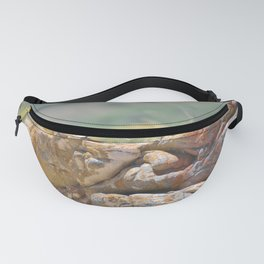 Cape Wagtail Fanny Pack