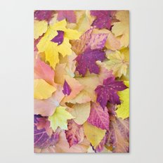 Autumn Candy Canvas Print