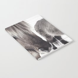 snowy Icelandic horse bw Notebook