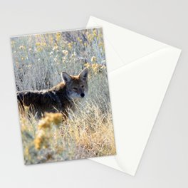 Stealthy Stare Stationery Cards