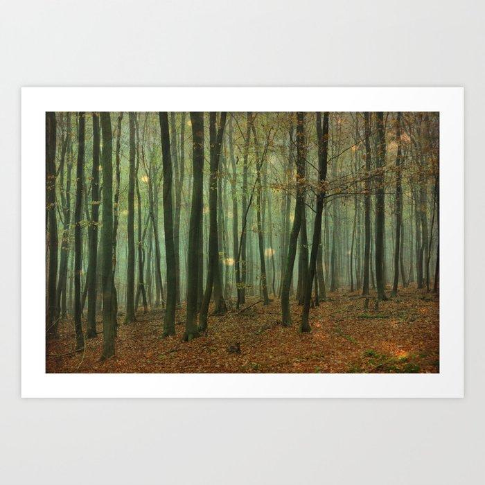 miraculous woods Art Print