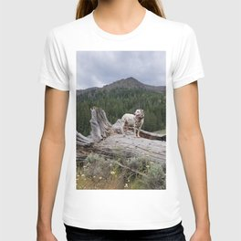 Charlotte in Muldoon Canyon T-shirt