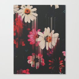 You got what I need Canvas Print