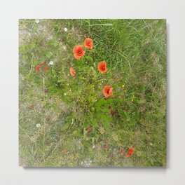 Flowers In Slovenia by Xara Svetlana Metal Print