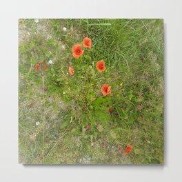 Flowers In Slovenia by Xara Svetlana Metal Print