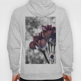 Pop of Color Flowers Eggplant Blue Hoody