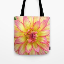 Pink and Yellow Dahlia Flower / Nature Macro Photography Tote Bag