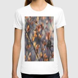 Spring Feelings T-shirt