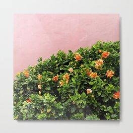 California Flowers on Pink Metal Print