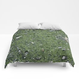 Life on a Rock at the Top of a Mountain Comforters