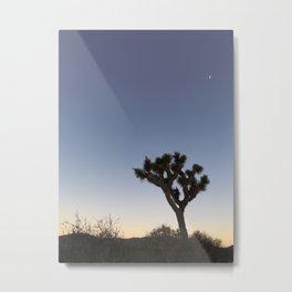 JOSHUA TREE XVIII Metal Print