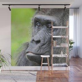 Gorilla_20141202_by_JAMFoto Wall Mural