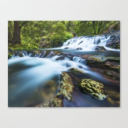 High motion waterfall Canvas Print
