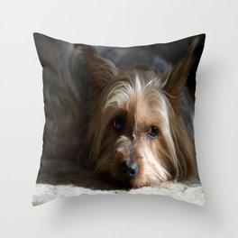 Lazy Kind of Day Throw Pillow