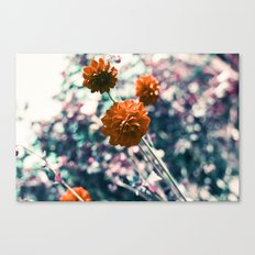 an angel's kiss in spring Canvas Print
