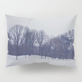 Landscape in the Snow Pillow Sham