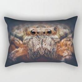 Lazarus Rectangular Pillow