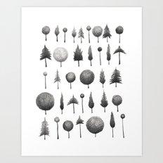 Arbor Vitae Art Print