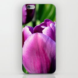 Purple Tulips iPhone Skin