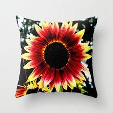Burnt Summer Throw Pillow
