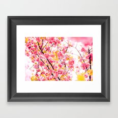 Welcome Beauty Spring Framed Art Print